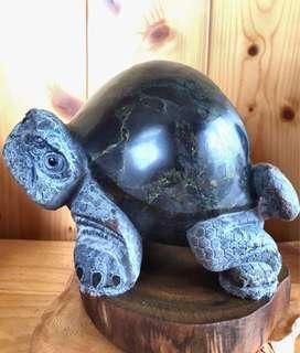 夢幻青石龜