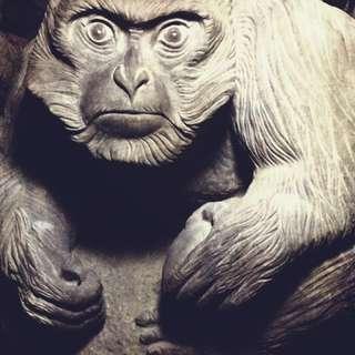 2018年全國石猴優選作品,意收藏者私訊出價
