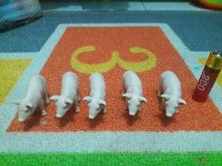 Set Pig