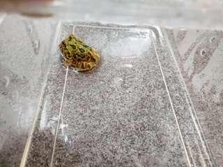 🚚 招財變異角蛙