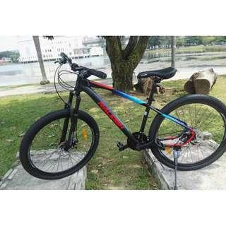 Brand New Raleigh Vico