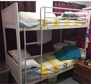 Double deck bed frame (can convert to 2 single bed frame)