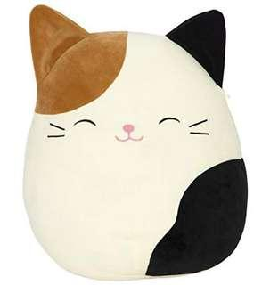 "🚚 BRAND NEW Squishmallow 8"" CAT"
