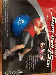 Fitness Gear Gym Ball 75cm