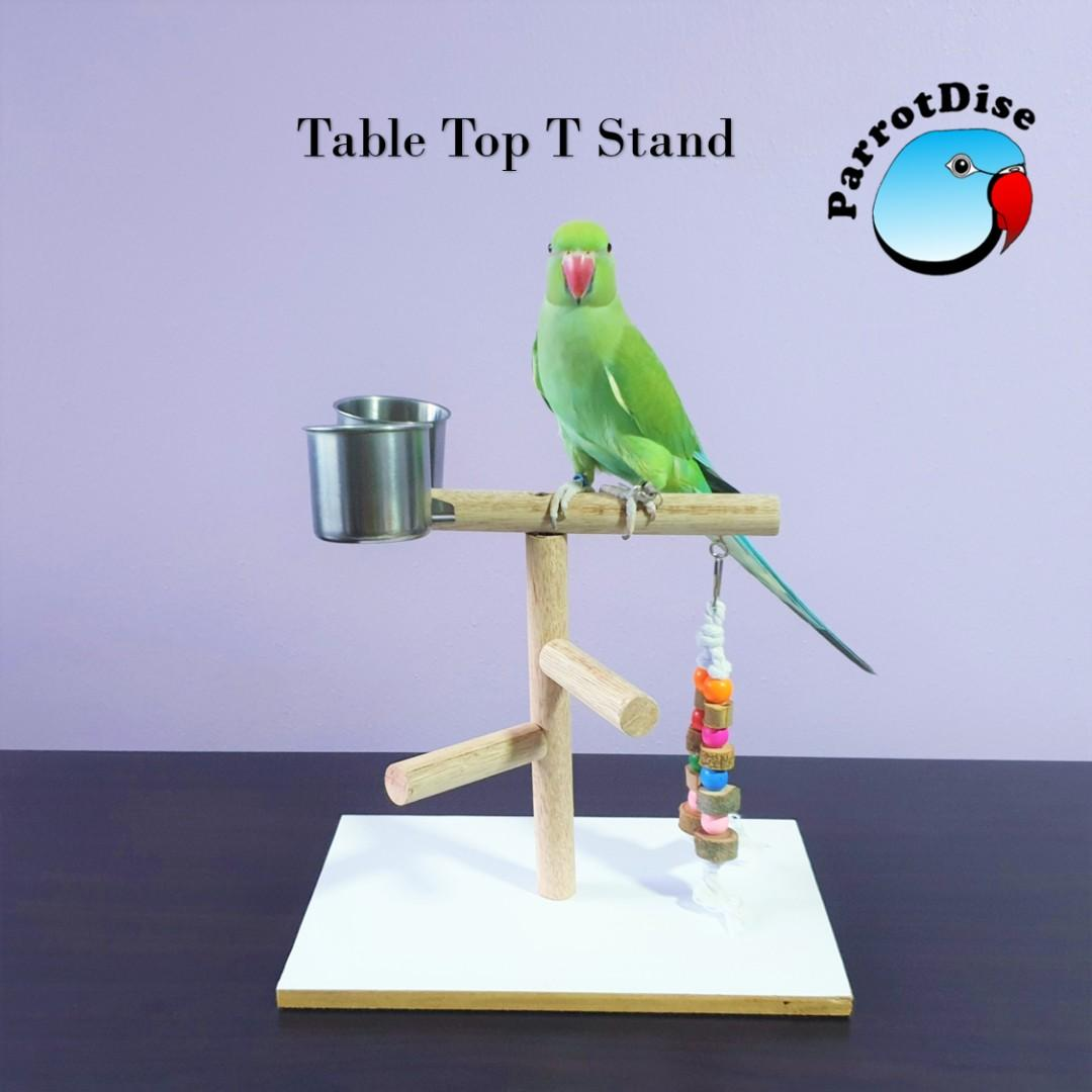 Parrot Table top T stand / gym