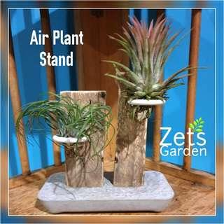 AIR PLANT TABLETOP STAND