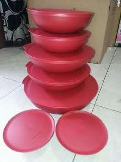 Alegra bowl activity tupperware