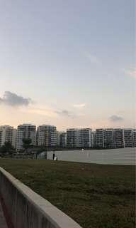 Looking for whole unit rental - TAMPINES CENTRAL 7 TAMPINES GREENLEAF
