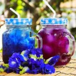 Organic Dried Butterfly Pea Flowers (50g, 20g, 15g & 10g)