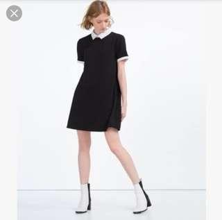 Zara Collared Dress
