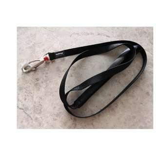 Leash for puppies