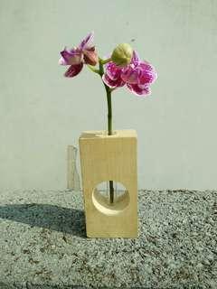 🚚 水耕容器-綠能園藝
