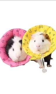 Small Animal Collar for Guinea Pigs, Rabbits