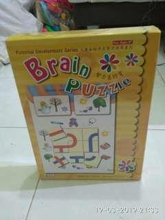 Puzzle brain puzzle