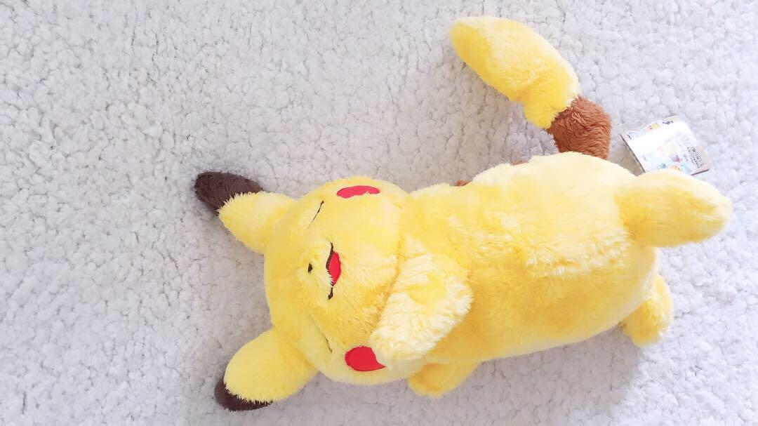 ⚡️ Pokemon - Life with sleeping PIKACHU Plushy ⚡️