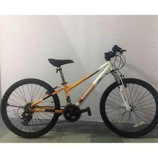 Try our bikes for attractive Rent