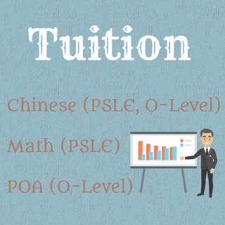[EXPERIENCED, AWARD-WINNING] Accounting (POA) / Chinese tuition (2019)