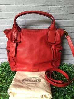 Fossil Emerson Large Crimson