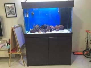 Fish tank 4ft with undersump and wooden cabinet