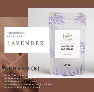TUCHROSES 'LAVENDER'