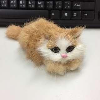 🚚 全新擬真貓咪