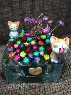 Kitty Freezy Flower terrarium