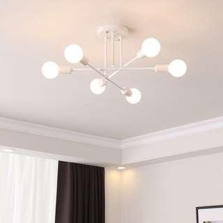 LED Ceiling Light with bulbs