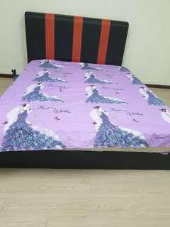 Queen Size Bed and Bed Frame