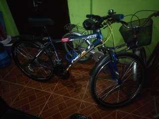 Next Foxtrail ATX40 Mountain Bike