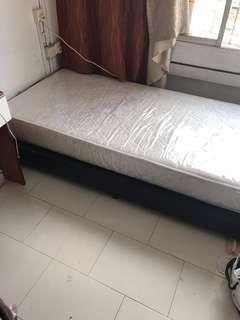 Single Bed & Base