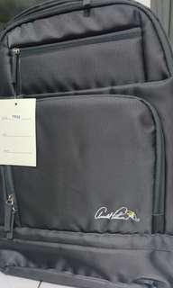 luggage carrier and Palmer back pack48 cm long 38 cm wode