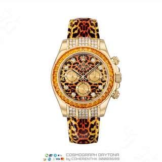 NEW ROLEX 116598SACO LEOPARD DAYTONA  (116598) RSP HK$517,300.00