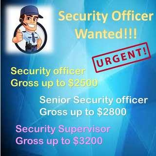 Security officer wanted!!!