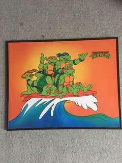 TMNT Hard Picture