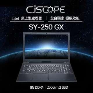 預購【CJS喜傑獅】客製化筆電 15.6吋 CJSCOPE SY-250 GX Intel 8代 IPS 文書 保固