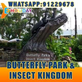 Butterfly Park & Insect Kingdom ღ E-holiday ღ