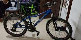 Raleigh mountain scout 24 inch mtb