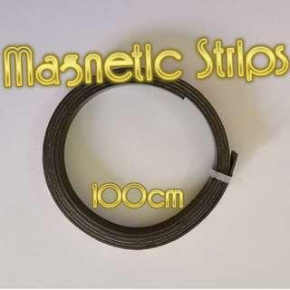 Multi-purpose magnetic strips