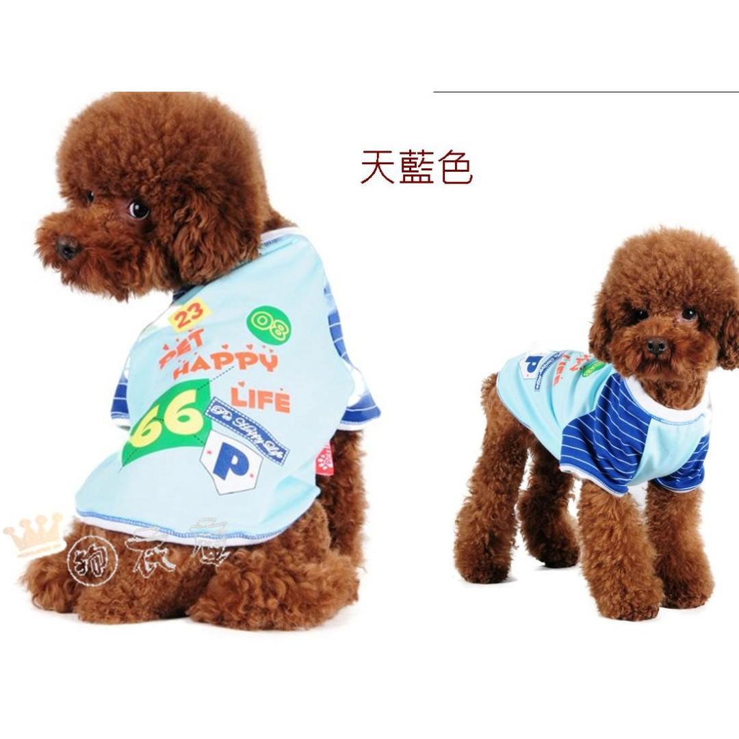 寵物衣服 狗衣服 藍色/紫色 休閒風 兩件超商取貨免運  尺寸齊全