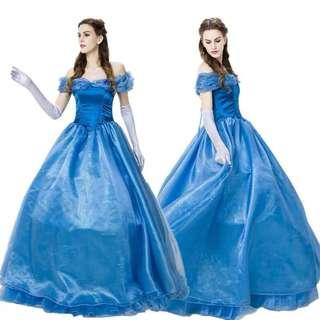 🚚 Adult Cinderella Dress Long Gown Preorder