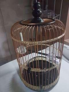 Fmale puteh cage