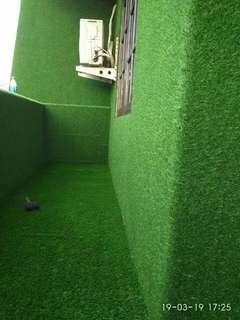 Rumput Sintetis Tuk Dekorasi Area Dinding Rumah