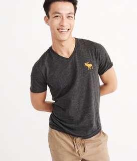AUTHENTIC NEW A&F MENS V-NECK BIG ICON CREW TEE <<GREY>>