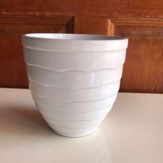 White pot small