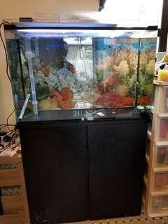 金魚缸一體式年櫃,長36吋,深16吋,高57吋
