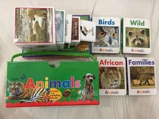 Real animals books and building blocks