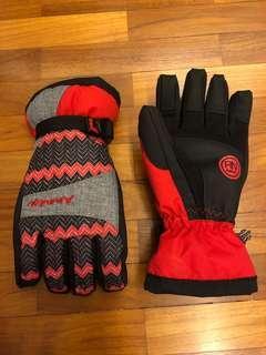 Ski Gloves (Large size)