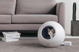 Cozy智能冷暖窩