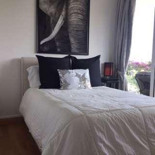 Full Size Bed & Mattress