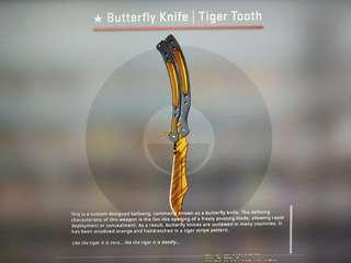 CSGO BUTTERFLY KNIFE| Tiger Tooth FN